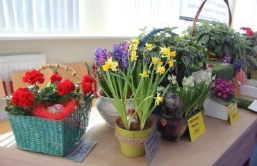 17 марта в школе «Премьер» прошла благотворительная пасхальная ярмарка 31