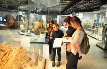 В феврале обучающиеся 5-6 классов посетили   с экскурсией Дарвиновский Музей 11