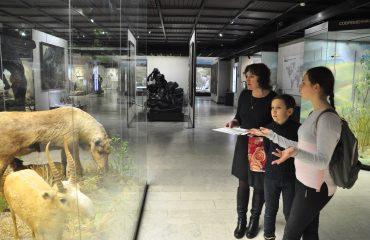 В феврале обучающиеся 5-6 классов посетили   с экскурсией Дарвиновский Музей 10