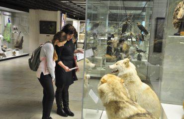 В феврале обучающиеся 5-6 классов посетили   с экскурсией Дарвиновский Музей