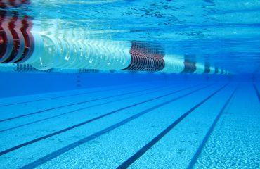 На городских соревнованиях по плаванию среди частных школ спортсмены «Премьера» завоевали 3 награды