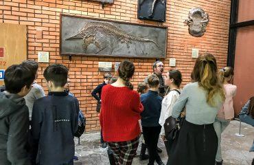 Палеонтологический музей им. Ю.А.Орлова 8